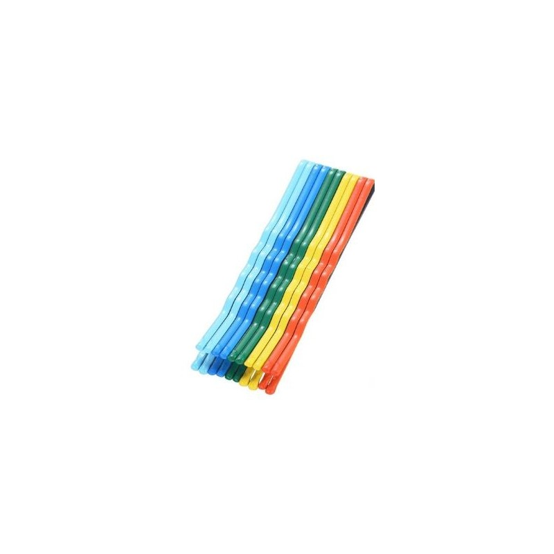 Everneed Colourful Hair Pins Rainbow
