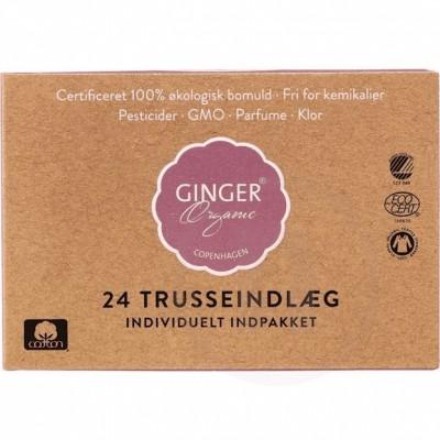 Ginger Organic Trosskydd Standard 24 st